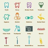elementos vetoriais dentais vetor