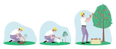 conjunto de ilustrações de cuidado de macieira vetor