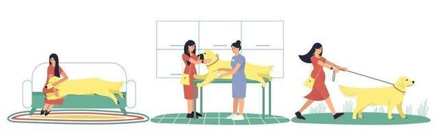 mulher cuidando de seu cachorro labrador doente vetor