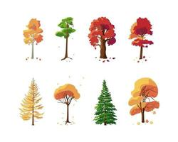 coleção colorida de árvores de outono em fundo branco vetor