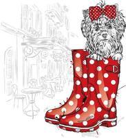 cachorro hipster sentado em uma bota de borracha vetor
