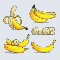 conjunto de vários frutos de banana amarela maduros inteiros e picados vetor
