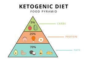 Ilustrador de vetor de pirâmide alimentar de dieta cetogênica
