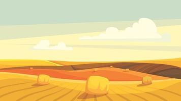 campos agrícolas após a colheita. vetor