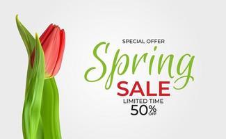 fundo de modelo de venda de primavera com flor tulipa realista. ilustração vetorial vetor