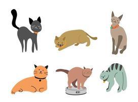 conjunto de vários gatos engraçados e fofos. estilo dos desenhos animados do doodle.