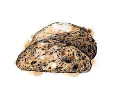 pão com um toque de aquarela, esboço desenhado à mão. ilustração vetorial de tintas vetor