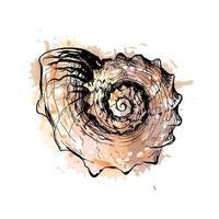 concha do mar com um toque de aquarela, esboço desenhado à mão. ilustração vetorial de tintas vetor