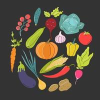 vegetais em um círculo sobre um fundo cinza escuro. alimento natural saudável. imagem plana do vetor