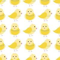galinhas amarelas bonitas sobre um fundo branco. padrão sem emenda de vetor em estilo simples