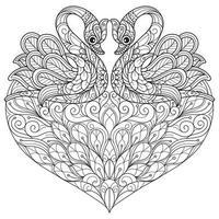 cisnes em fundo branco. esboço desenhado à mão para livro de colorir adulto vetor
