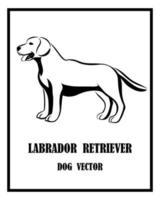 cão labrador retriever vetor eps 10