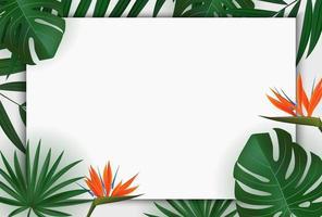 folha de palmeira verde realista natural com fundo tropical de flor de strelitzia. ilustração vetorial eps10 vetor