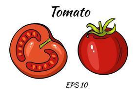um conjunto de tomates suculentos. vetor