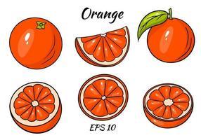 vetor de laranja. frutas frescas de orangotango em estilo cartoon. metade e uma fatia de laranja de vetor de anel isolada no fundo branco.