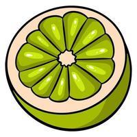 corte a metade de um limão verde. limão verde brilhante suculento. vetor