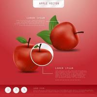 maçã realista. frutas e vetor de maçã fresca.