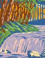a cachoeira boykin creek na floresta nacional de angelina, localizada no leste do texas vetor