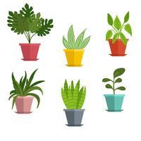 Conjunto de plantas em vaso Vector