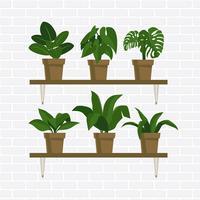 Plantas em vasos vetor