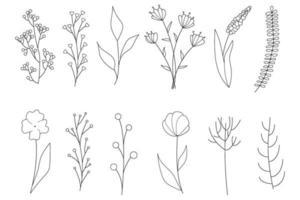 coleção de elementos florais simples minimalistas. esboço gráfico. desenho de tatuagem na moda. flores, grama e folhas. elementos naturais botânicos. ilustração vetorial. contorno, linha, estilo do doodle. vetor