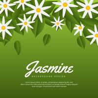 Fundo de flor de jasmim vetor