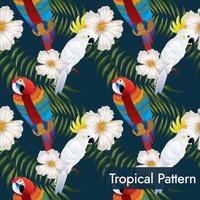padrão tropical sem costura com papagaios vetor