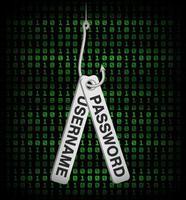 dados de nome de usuário e senha de phishing de cartão de crédito vetor