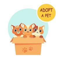 adotar um animal de estimação. gatinhos fofos na caixa. ilustração vetorial em estilo simples. vetor