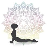 silhueta de uma mulher em pose de cobra de ioga em um desenho de mandala vetor