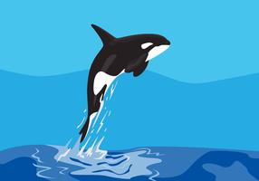 Ilustração vetorial de baleias assassinas vetor
