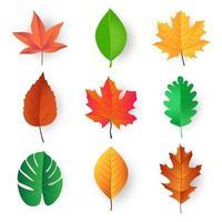 desenho vetorial de folhas coloridas vetor