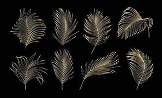 coleção de folhas de palmeira de ouro vetor