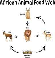 teia alimentar animal africana para educação vetor