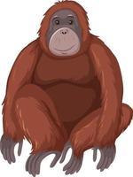 animal selvagem orangotango em fundo branco vetor