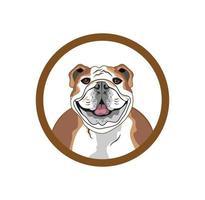 ícone de logotipo de cachorro pitbull design de logotipo de avatar vetor