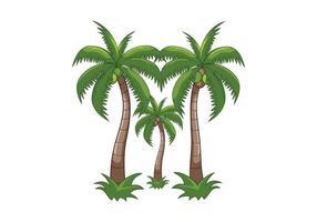 desenho de ilustração de coqueiros vetor