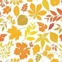 folhas de outono sem costura padrão floral. papel de parede decorativo da natureza da queda. ícone de folha definido no fundo de azulejos decorativos. vetor