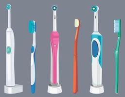 conjunto de diferentes escovas de dentes. vetor