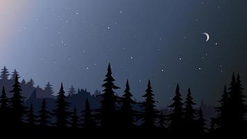 paisagem da floresta à noite. vetor