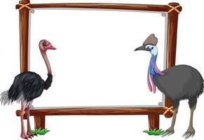 banner vazio com avestruz em fundo branco vetor
