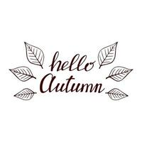 mão desenhada letras com elementos decorativos, folhas de outono. texto Olá outono no fundo branco. ilustração vetorial. perfeito para impressões, folhetos, banners, convites vetor
