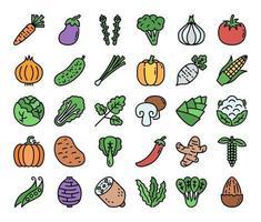 ícones de vetor de contorno de cor vegetal