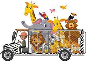 conceito de zoológico com animais selvagens no carro, isolado no fundo branco vetor