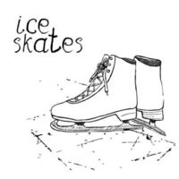 mão desenhada esboço patins de gelo. desenho esporte doodle elemento itens de esportes de inverno. no fundo do quadro vetor