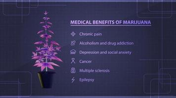 benefícios médicos da maconha, pôster com arbusto de maconha digital rosa com infográfico com benefícios médicos vetor