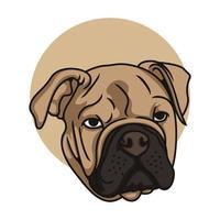ilustração em vetor pit bull cara plana
