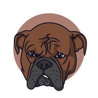 ilustração em vetor pit bull desapontado em fundo isolado