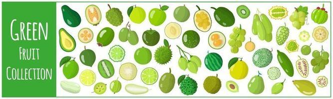 conjunto de ilustrações de desenho vetorial com frutas verdes exóticas, isoladas no fundo branco. vetor