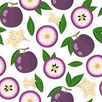 padrão sem emenda de desenho vetorial com frutas exóticas de maçã estrela roxa, flores e folhas em fundo branco vetor